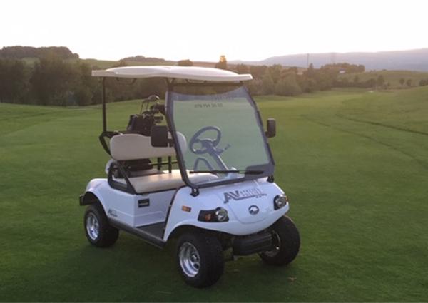 Caddy de golf